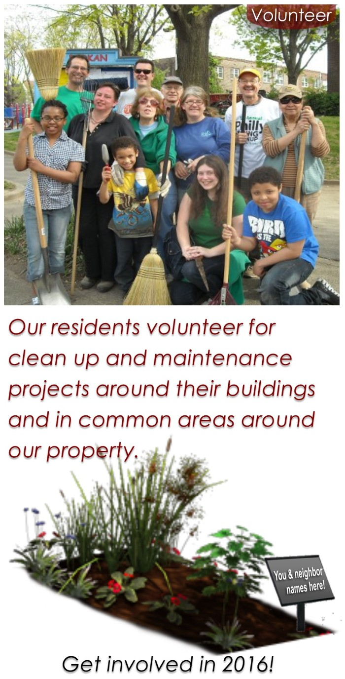 Home Page Volunteer Link 305 x 600